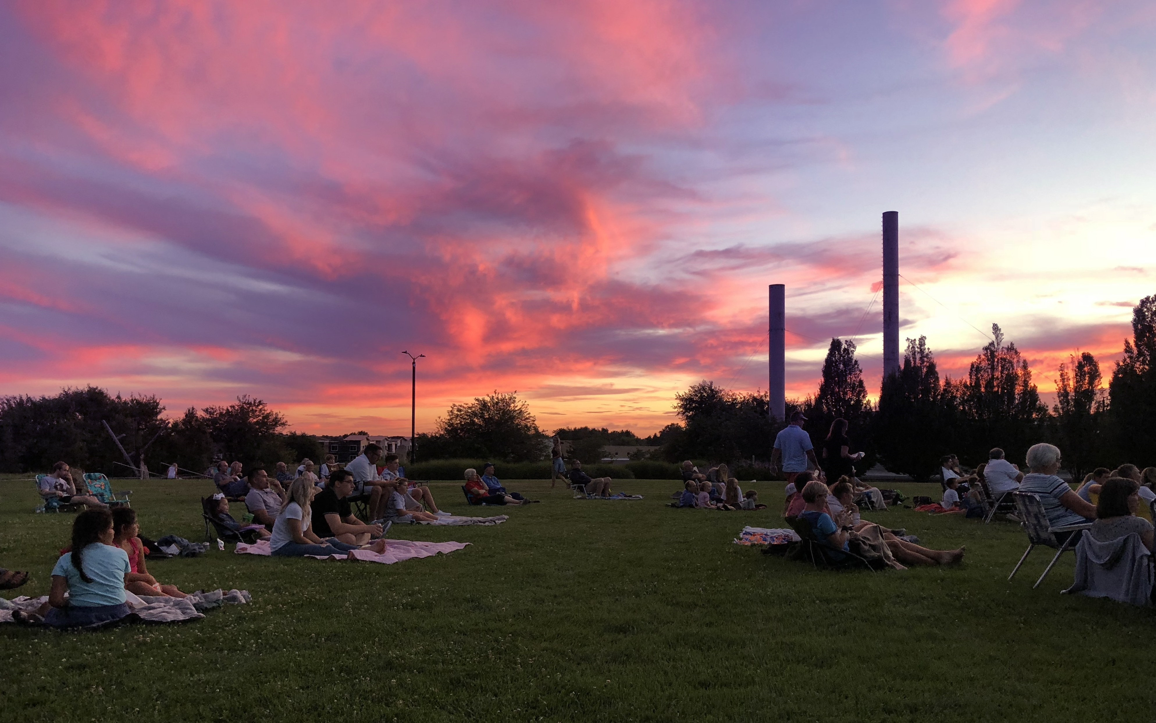 people seating on grass sunset